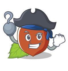 Pirate hazelnut character cartoon style vector