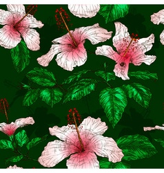 Seamless floral pattern with hibiscus flowers vector