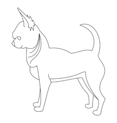 Chihuahua dog line vector