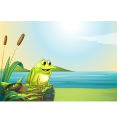 A frog above a trunk at the riverbank vector image
