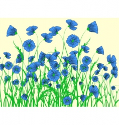 Blue poppy vector