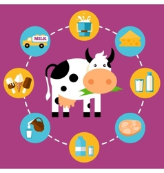 Infographics milk products vector