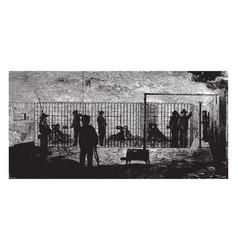 Penitentiary vintage vector