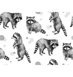 Hand drawn seamless pattern with raccoons vector