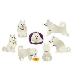 funny white fluffy dog playing sitting eating vector image vector image