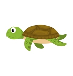 Tortoise sea life animal icon graphic vector