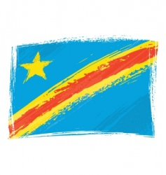 Congo flag vector