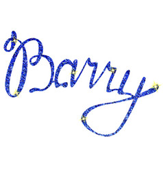 Barry name lettering tinsels vector