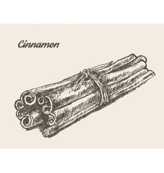 Cinnamon vintage hand drawn vector