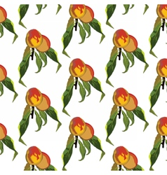 Fresh peaches pattern vector