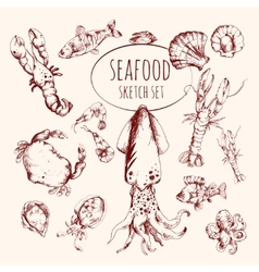 Seafood sketch set vector