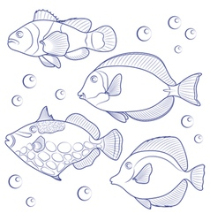 Collection of tropical reef fish vector image