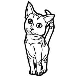 Cat coloring page vector
