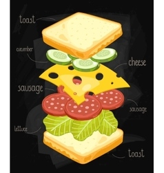 Sandwich ingredients on chalkboard vector