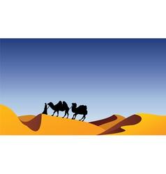 Camels and bedouin in desert vector