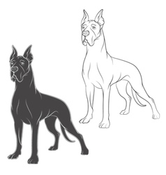 drawing of dog isolated objects on a white vector image vector image