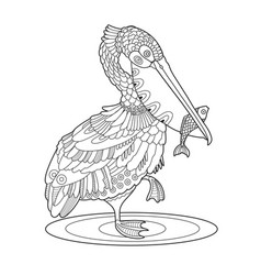 Pelican bird with fish coloring book vector