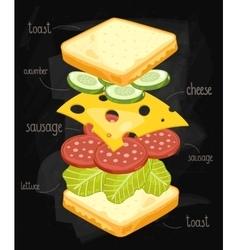 Sandwich ingredients on chalkboard vector