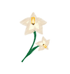 drawing gladiolus flower ornament image vector image