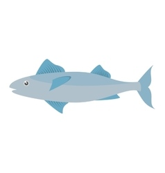 mackerel fish sea life design icon vector image