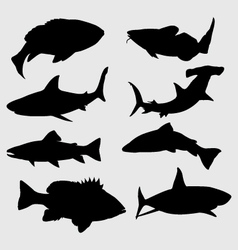 Silhouettes of fish vector image vector image
