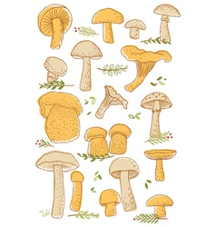 Mushrooms doodle set vector image