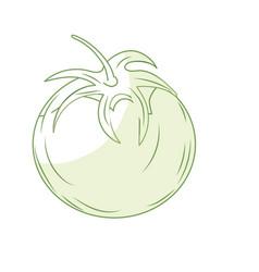 Silhouette fresh tomato natural vegetable vector