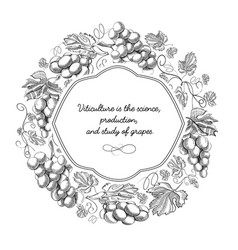 white colored round frame hand drawn doodle vector image