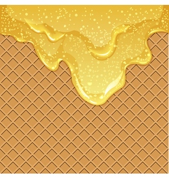 Waffle background with honey vector