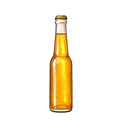 Closed bottle of cold beer sketch style vector