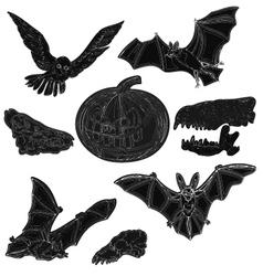 Halloween symbols pumpkin skull bat owl vector