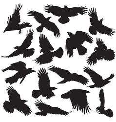 Crows silhouette set 02 vector