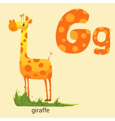 Letter g with cute giraffe vector