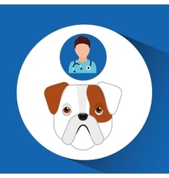 Doctor cartoon veterinarian dog bulldog puppy vector