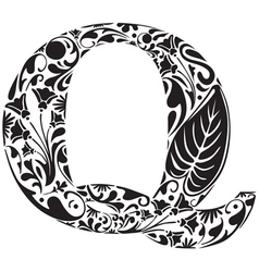 Floral Q vector image vector image