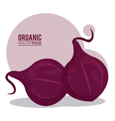 organic healthy food red onion vector image vector image