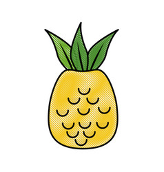 Pineapple fruit nature vector