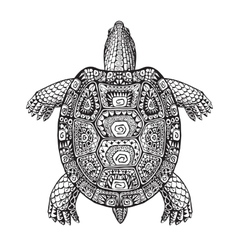 Turtle ethnic graphic style with decorative vector image vector image