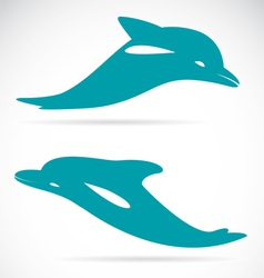 image of an dolphin vector image