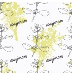 Hand drawn marjoram branch and handwritten sign vector