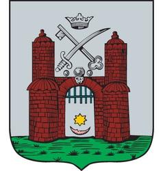 Tartu City vector image vector image