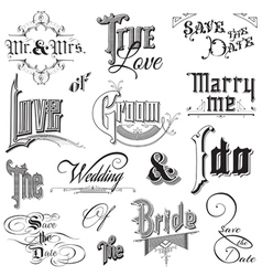 Calligraphic Wedding Elements vector image