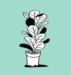 Plant and pot vector