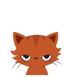Angry cat cartoon cute grumpy cat vector