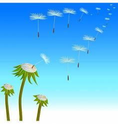 Dandelions seeds on the wind vector