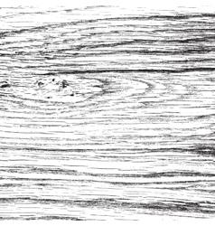 Light Oak Texture vector image vector image