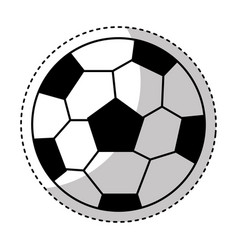 Soccer ball isolated icon vector
