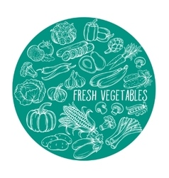 with hand drawn vegetables vector image vector image