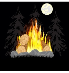 Campfire in wood vector