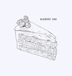 blueberry layer cake hand drawn sketch water vector image vector image